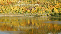 Autumn landscape with river Stock Footage