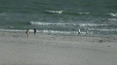 TI Beach 3 Stock Footage