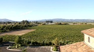 Winery Estate Stock Footage