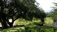 Sonoma Vineyard Estate - stock footage