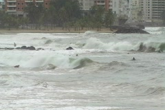 Hurricane Earl - Surfers at Condado Beach - stock footage