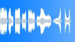 Accordion - sound effect