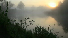 The wood river. Morning. A fog. - stock footage