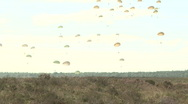 Stock Video Footage of ParachuteLanding1