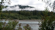 Stock Video Footage of Hoh River