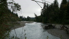 Hoh River Stock Footage