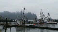 La Push Stock Footage