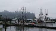 Stock Video Footage of La Push