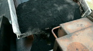 Pouring Hot Ashfalt Stock Footage