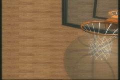 1840 Basketball Stock Footage