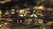Water drop on puddle slow motion Stock Footage