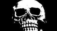Stock Video Footage of Black and White Scary Skeleton Skull 2