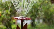 Garden fountain closeup three clips Stock Footage
