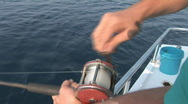 Stock Video Footage of Saltwater Fishing Reel