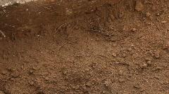 Digging In Garden Stock Footage