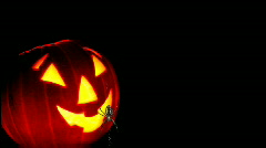 Candlelit Halloween Pumpkin and Spider Stock Footage