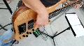 Bass Guitarist Footage