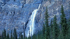 Takakkaw Falls Forest P HD 7407 Stock Footage