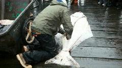 Halibut fish cutting Seward Alaska dock P HD 8240 Stock Footage