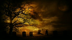 Halloween Cemetary - stock footage