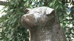 Hachiko Bronze Statue in Shibuya Train Station. Tokyo, Japan - stock footage