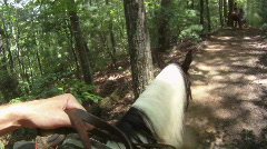 Horse Trail Riding Stock Footage