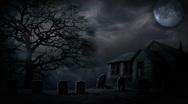 Halloween Scary Bats Stock Footage