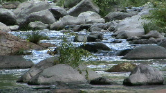 Tranquil Creek Long Lens Stock Footage