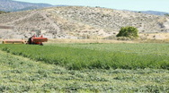 Farm tractor cutting hay agriculture P HD 0849 Stock Footage