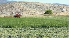 Tractor cutting alfalfa approach on farm P HD 0847 Stock Footage