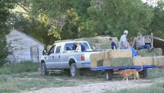 Truck arrive hay stack P HD 7870 Stock Footage