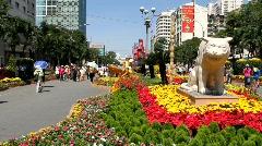 Vietnam: New Years Celebrations Stock Footage