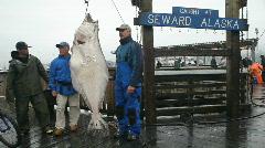Pallas kalastajien roikkuu P HD 8226 Arkistovideo