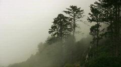 Mist on the Oregon Coast - stock footage