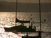 Stock Video Footage of Sailboats pass in the Sunset