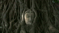 Buddha Head Statue Overgrown by Tree Roots Ancient Asia Zen Meditation Thailand Stock Footage