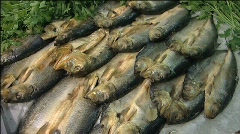 Fish for sale 001 Stock Footage