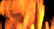 Wood burns in the fire Stock Footage