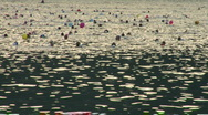 Stock Video Footage of swim 19