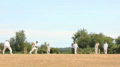 Cricket 7 long shot Stock Footage