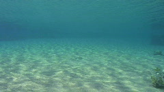 Sun rflection on sandy ocean floor Stock Footage