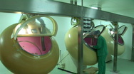Women working in the Drug Factory Stock Footage