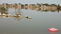 Flood Water in Sajawal City, Pakistan Stock Footage