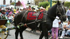The Sangolqui Fiestas, September 2010 - stock footage
