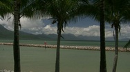 Stock Video Footage of Row of palm trees and distant mountains