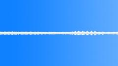 Cicadas Sound Effect