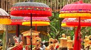Stock Video Footage of Bali Temple Ceremony 52