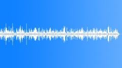 Frog chorus - sound effect