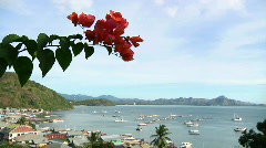 Flores Port 2 Stock Footage
