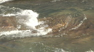 Stock Video Footage of white river rapid forms over submerged rock formation audio